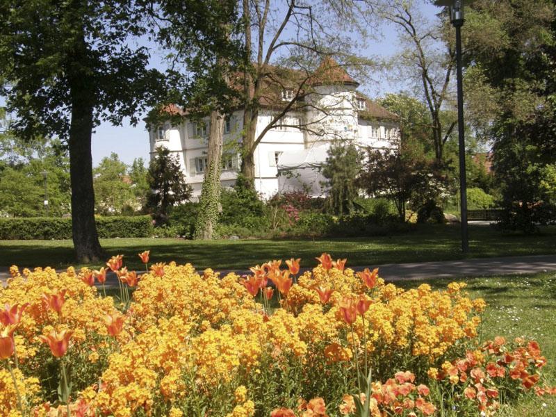 BR-Schlosspark-Blüten im Quadrat