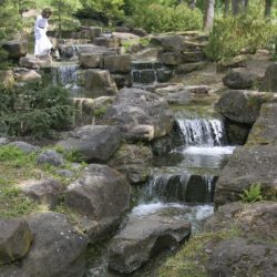 Japangarten_im Kurpark_Foto_Kurverwaltung Mergentheim