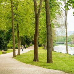 Ein Spaziergang durch den Park