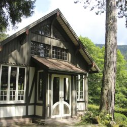 Bad Wildbad_Kurpark_Vogelhaus