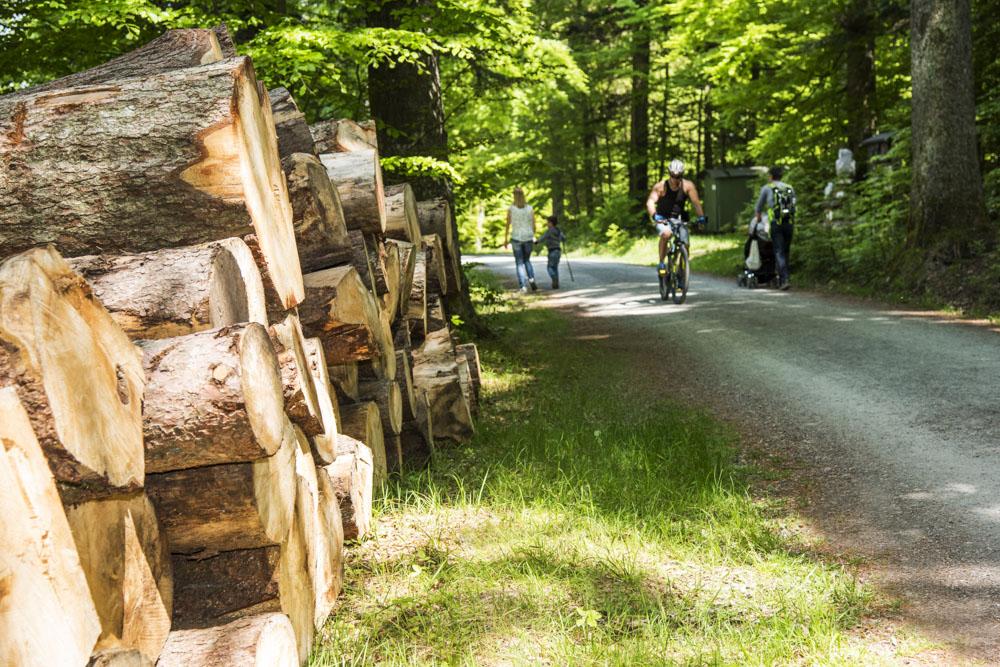 Bad Wildbad_Märchenweg Das kalte Herz - copyright Locher Fotodesign & Manufaktur (2)