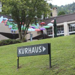 Kurpark Bad Wildbad (1)
