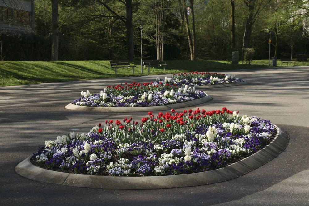 Kurpark Bad Wildbad Frühling (3)