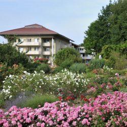 Rosengarten im Kurpark Bad Sassendorf_09.07.2017_Dirk Vaartjes_DSC_5471