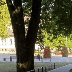 Sitzinseln vor dem Kurmittelhaus_Bad Rothenfelde (SLS)